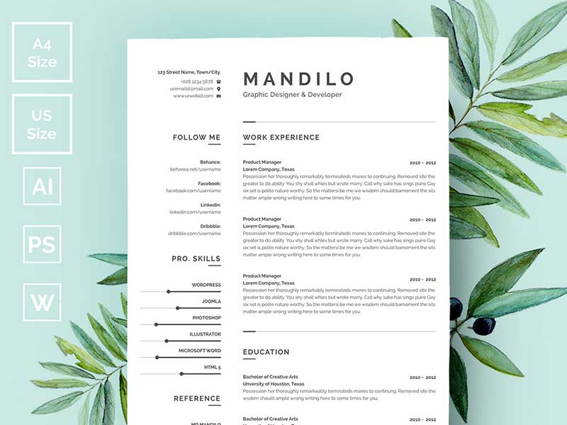 Clean Resume CV Template Free