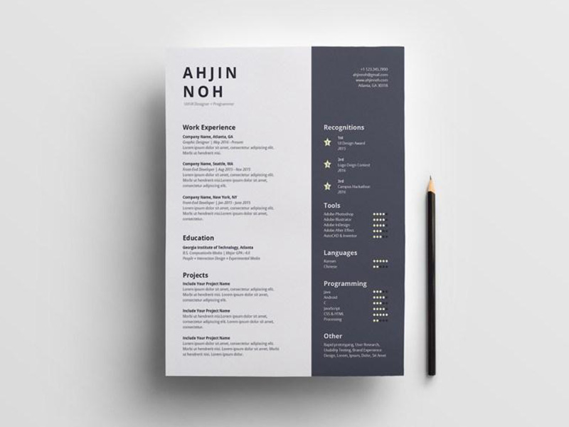 free minimal two column resume indesign template