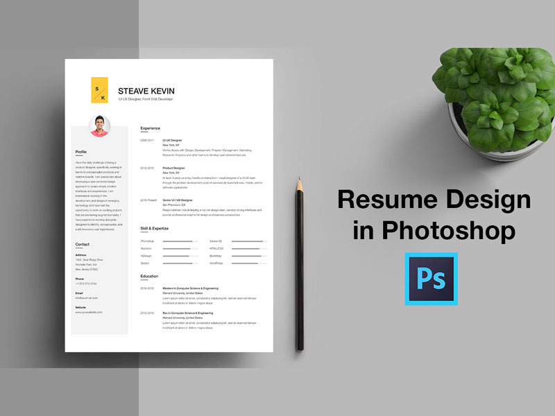 free resume templates psd  download now